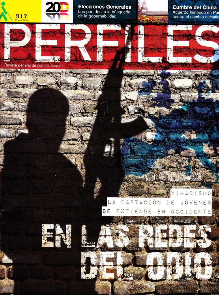 PERFILES 317